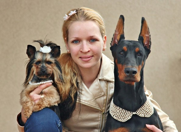 along-with-the-dogs-and-i-928549_960_720